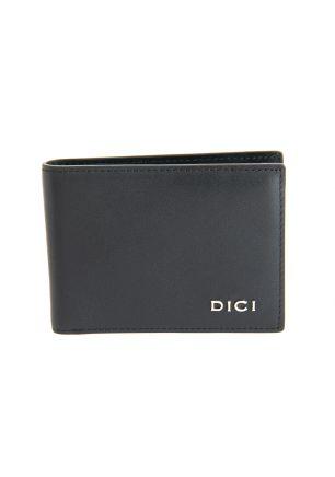 DICI DCXW00250100