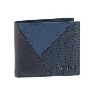 DICI DCXW00290200
